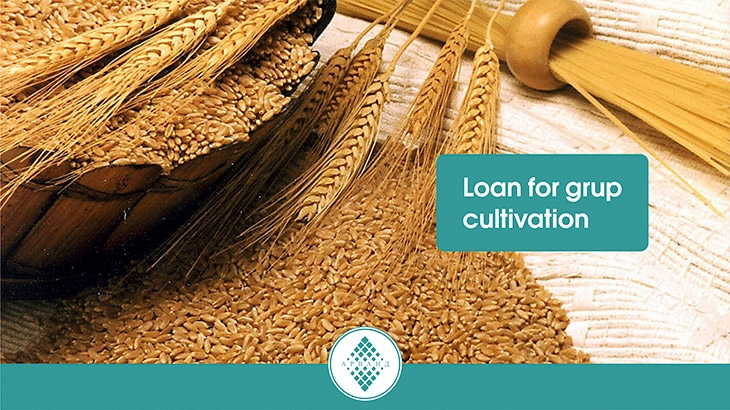 Loan for crop cultivation